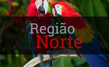 Photo of Região Norte do Brasil: Estados, Mapa, Clima, Cultura, Vegetação
