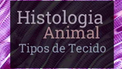 o que é histologia, o que é tecido, tipos de tecido animal